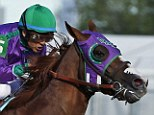 Favorite: Jockey Victor Espinoza rides California Chrome to win the 140th running of the Kentucky Derby, the horse's nasal strip visible
