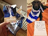 The dog that ate the letter