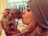 Cara Delevingne, with her pet rabbit Cecil, which has a lucky escape at Mulberry HQ last week