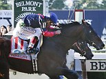 Big finish: Tonalist (11) with Joel Rosario up edges out Commissioner with Javier Castellano up to win the 146th running of the Belmont Stakes horse race on Saturday