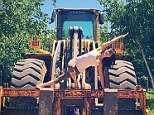 Dirty work: Hilaria Baldwin shows off her latest pose 'variation of side plank' on top of a large bulldozer on Saturday