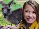 Crikey, it's a psychic kangaroo! Bindi Irwin's introduces Flopsy the Predictaroo as she forecasts World Cup success for the Socceroos