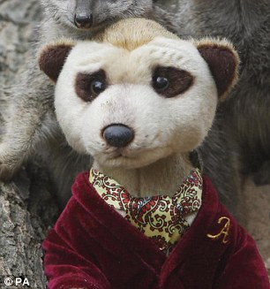 Separated at birth: Aleksandr the Meerkat, the Russian character made famous through a series of car insurance adverts