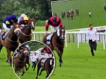 Runner: A spectator sprinted on to the circuit at Leicester Racecourse and ran alongside the horses