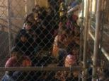 Caged: Congressman Henry Cuellar took these shocking images to highlight how overwhelmed the US authorities are with the recent tide of illegal immigrants