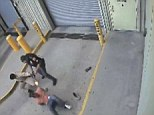 Deadly: Officer Flores shoots Saenz as his hand is knocked by the guard