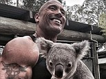 Claws? What claws? Dwayne 'The Rock' Johnson flashes his famous smile...as a Koala digs its nails into his huge bicep