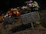 Unidentified graves of people whose remains were found in the desert are seen in Falfurrias, Texas April 1, 2013