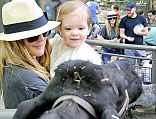 Udderly fun day out: Drew Barrymore and husband Will Kopelman take adorable daughter Olive to see cows and sheep at Central Park Zoo