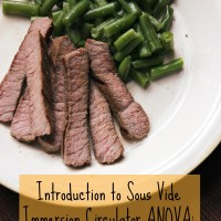 Introduction to Sous Vide Immersion Circulator by ANOVA: Cooking a Steak