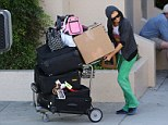 Where's my limo driver? Paris Hilton struggles to handle her towering pile of luggage... complete with two dogs and a ferret