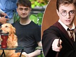 Daniel Radcliffe says he's too young to play an older, graying Harry Potter after series author J.K. Rowling debuts a short follow-up story to her last novel