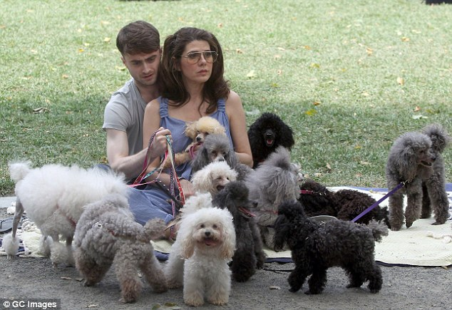 Puppy love! Last week Daniel was seen cuddling up with his much older co-star Marisa Tomei, 49, on set of their new film in New York on Sunday