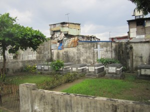 Graves, cats and right outside the cemetery, the slums