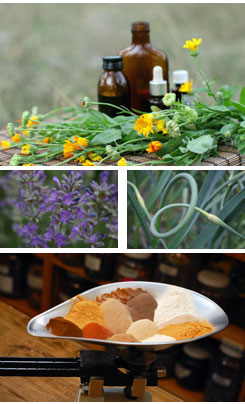 Images of flowers, herbs and other natural healing materials