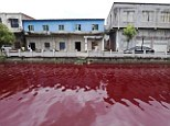 Locals said everything looked normal at 5am but within just a few minutes the water had turned crimson