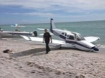 Fatal crash: The 1972 Piper Cherokee made an emergency landing on Caspersen Beach in Venice and struck a father and his daughter - killing the man and critically injuring the girl