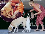 Kaley Cuoco has been away filming new movie Burning Bodhi in New Mexico. And it appears the 28-year-old was over the moon about being reunited with the furry members of her family. On Wednesday the Big Bang Theory star shared photos snuggled up to her two rescue dogs, Norm and Ruby before taking them to the vet.