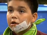 'He was my best friend': Jeremy Martinez, 10, is devastaed after his pit bull was shot death by police following a vicious attack