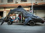 "\nChinese fishermen Cai Chengzhu, 48, took centre stage at the fish market in the city of Shishi in south China¿s Fujian province after he turned up with this two ton whale shark.\n\nAlthough illegal to catch he claimed that the huge whale shark, which is an endangered species, had swum into his net chasing other fish.\n\nHe said: ""As you can see it had eaten a fair few but after being trapped in the net, it had died. By the time we managed to free it, sadly it was too late. It was really unfortunate and we did our best to free it, but having caught it and because it was already dead, it seemed a shame to waste it.""\n\nSo he had put the huge whale shark in with the rest of his fish, and brought it back with him to the fish market where he sold it off together with all the other fish.\n\nHe said: ""It was almost 5 metres long and weighed more than two tons."" He added that he had put it on sale with an asking price of 20,000 GBP even though they weren't sure if it was even legal to sell"