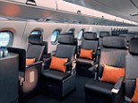 Your very own cushion: The increased personal space for first class travellers is covered