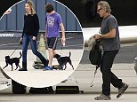 EXCLUSIVE: Harrison Ford, Calista Flockhart, their son Liam and the family's new dogs board a private jet in Santa Monica which Harrison piloted.   Pictured: Harrison Ford, Calista Flockhart and Liam  Ref: SPL816479  060814   EXCLUSIVE Picture by: Splash News  Splash News and Pictures Los Angeles: 310-821-2666 New York: 212-619-2666 London: 870-934-2666 photodesk@splashnews.com
