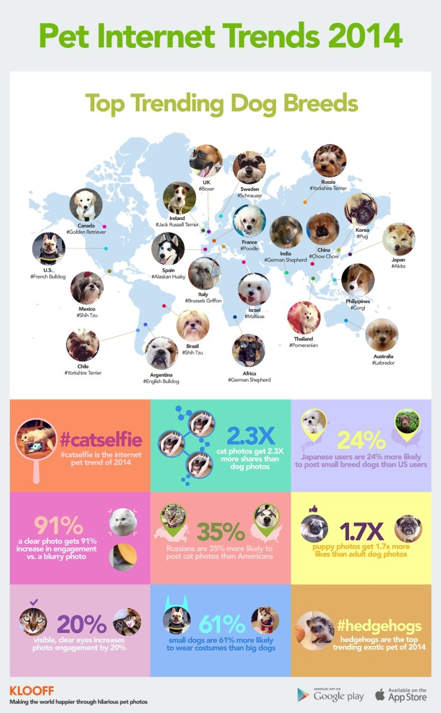Pet Internet Trends 2014