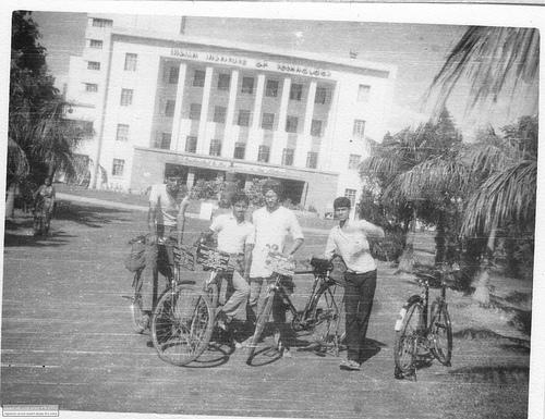 गोलानी, विनय, विवेक और उसका दोस्त