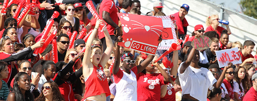Students looking happy cheering in the stands at a sports game