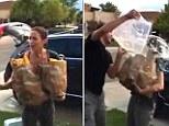 Good one: John Krasinski gave wife Emily Blunt short notice of her participation in the Ice Bucket Challenge