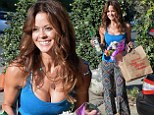 Showing them the goods! Brooke Burke flashes cleavage in low-cut top as she retrieves groceries from car