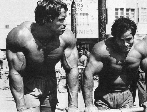 Arnold & Franco at Muscle Beach Venice