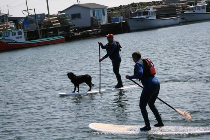 SUP Stand-Up Paddleboard