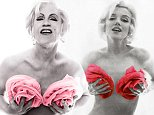 LINK TO http://edelmangallery.com/exhibitions-and-projects/exhibition-pages/2014/sandro-miller-malkovich,-malkovich,-malkovich-homage-to-photographic-masters.html\n\n\nBert_Stern___Marilyn_in_Pink_Roses_(date),_2014.jpg