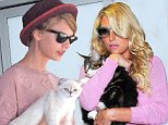 EXCLUSIVE TO INF. ALL-ROUNDER.\nSeptember 23, 2014: Taylor Swift carries her cat, named Olivia Benson, while leaving her apartment in New York City this morning.\nMandatory Credit: Elder Ordonez/INFphoto.com Ref: infusny-160
