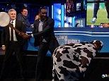 Heskey Banjo Cow