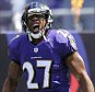 ray rice preview1.jpg
