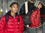 26 Oct 2014 - NEW YORK - USA  WILLOW SMITH ARRIVES WITH HER DOG AT JFK AIRPORT IN NYC.  BYLINE MUST READ : XPOSUREPHOTOS.COM  ***UK CLIENTS - PICTURES CONTAINING CHILDREN PLEASE PIXELATE FACE PRIOR TO PUBLICATION ***  **UK CLIENTS MUST CALL PRIOR TO TV OR ONLINE USAGE PLEASE TELEPHONE  44 208 344 2007 ***