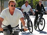 EXCLUSIVE TO INF. November 2, 2014: Arnold Schwarzenegger and his new flame Heather Milligan go out for a Sunday morning bike ride on a double date with his buddy Ralf Moeller and his girl in Santa Monica, CA. Mandatory Credit: Sasha Lazic/INFphoto.com Ref.: infusla-257|sp|CODE000