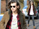 04.NOVEMBER.2014 - LONDON - UK\n*** STRICTLY NOT AVAILABLE FOR MAIL ONLINE AND ANY ONLINE SUBSCRIPTION DEALS UNLESS FEE AGREED PRIOR TO USAGE***\n*** EXCLUSIVE ALL ROUND PICTURES ***\nONE DIRECTION'S HARRY STYLES SEEN MEETING FANS OUTSIDE A RECORDING STUDIO IN LONDON, UK.\nBYLINE MUST READ : XPOSUREPHOTOS.COM\n***UK CLIENTS - PICTURES CONTAINING CHILDREN PLEASE PIXELATE FACE PRIOR TO PUBLICATION ***\n**UK CLIENTS MUST CALL PRIOR TO TV OR ONLINE USAGE PLEASE TELEPHONE 0208 344 2007**