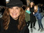 """NEW YORK, NY - NOVEMBER 16:  Actress Brooke Shields and daughter attend """"Penguins Of Madagascar"""" New York premiere at Winter Village at Bryant Park Ice Rink on November 16, 2014 in New York City.  (Photo by Andrew Toth/Getty Images)"""
