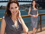 SYDNEY, AUSTRALIA - NOVEMBER 18:  Angelina Jolie poses at the photo call of Unbroken at Sydney Opera House on November 18, 2014 in Sydney, Australia.  (Photo by Brendon Thorne/Getty Images)