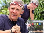 ***EMBARGO NOT TO BE USED BEFORE 21:00, 24 Nov 2014 - EDITORIAL USE ONLY - NO MERCHANDISING***  Mandatory Credit: Photo by REX (4270584n)  Bushtucker Trial 'The Critter Cube' part two - Jimmy Bullard  'I'm A Celebrity...Get Me Out Of Here!' TV Programme, Australia - 24 Nov 2014