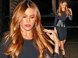 UK CLIENTS MUST CREDIT: AKM-GSI ONLY EXCLUSIVE: Sofia Vergara and all her latin glamour arrived at Four Seasons Los Angeles for dinner, after taping 'Jimmy Kimmel Live!'. The Colombian actress wore a black, long sleeved lace and leather peplum dress with black peep toe pumps, embellished ankle straps and carried a beige leather Chanel bag.  Pictured: Sofia Vergara Ref: SPL904209  031214   EXCLUSIVE Picture by: AKM-GSI / Splash News