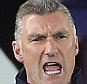 Leicester's Nigel Pearson looks on Barclays Premier League- Leicester City vs Liverpool - King Power Stadium - England - 2nd November 2014 - Picture David Klein/Sportimage