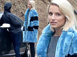 @NATIONAL PHOTO GROUP\\nDianna Agron chats with a friend in Hollywood.\\nJob: 120414X2\\nEXCLUSIVE  December 3, 2014  Los Angeles, CA..NPG.com