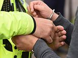 A voluntary scheme on stop and search use was announced by Home Secretary Theresa May in April