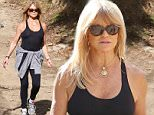Goldie Hawn hiking wit a friend wearing no bra.  The star smiled for photos after her workout, showing off her arms and shoulders, despite the gloomy weather.  The star seemed undisturbed by recent news of her daughter's split from fiance Matt Bellamy December 14, 2014  X17online.com