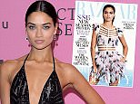 LONDON, ENGLAND - DECEMBER 02:  Shanina Shaik attends the pink carpet of the 2014 Victoria's Secret Fashion Show on December 2, 2014 in London, England.  (Photo by Anthony Harvey/Getty Images for Victoria's Secret)