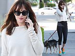 Picture Shows: Dakota Johnson  January 20, 2015    Actress Dakota Johnson chats on her cell phone while walking her dog in West Hollywood, California.     Dakota will soon be seen in the highly anticipated film, '50 Shades Of Grey'.    Exclusive - All Round  UK RIGHTS ONLY    Pictures by : FameFlynet UK    2015  Tel : +44 (0)20 3551 5049  Email : info@fameflynet.uk.com
